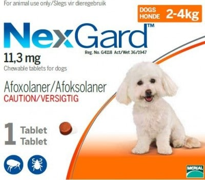 NEXGARD 2-4KG (0.5G) 1 PACK SINGLE Small Orange **ON SPECIAL - Boxes slightly squashed!