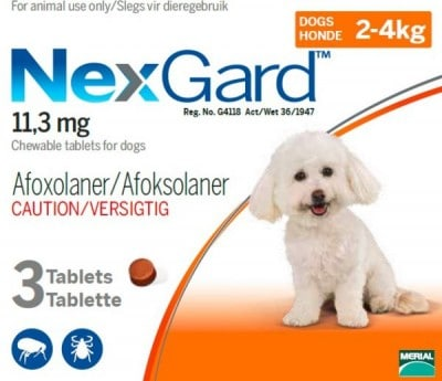 NEXGARD 2-4KG (0.5G) 3 PACK Small Orange *ON SPECIAL - PRODUCT EXPIRY DATE 08/2021 - WHILE STOCKS LAST*