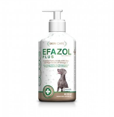 EFAZOL PLUS 250ML *ON SPECIAL - PRODUCT EXPIRY DATE 08/2021 - WHILE STOCKS LAST*