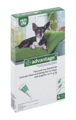 ADVANTAGE SML DOG (GREEN) up to 4KG