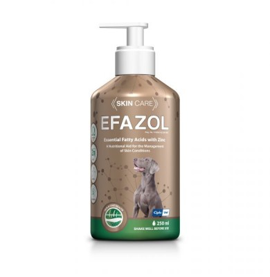 EFAZOL 250ML *ON SPECIAL - PRODUCT EXPIRY DATE 12/2021 - WHILE STOCKS LAST*