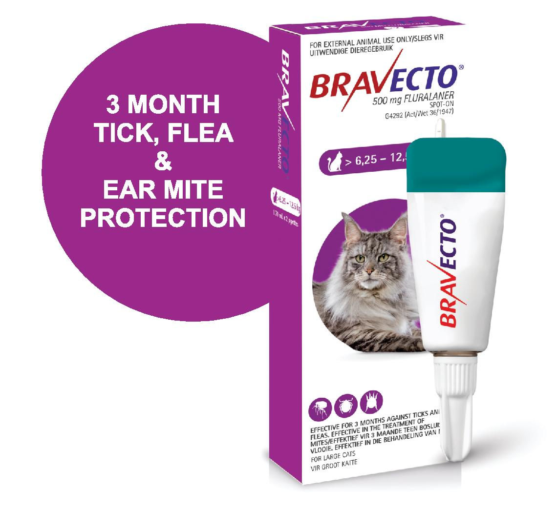 BRAVECTO SPOT-ON CAT Large Purple >12.5kg *ON SPECIAL - PRODUCT EXPIRY 04/2021*