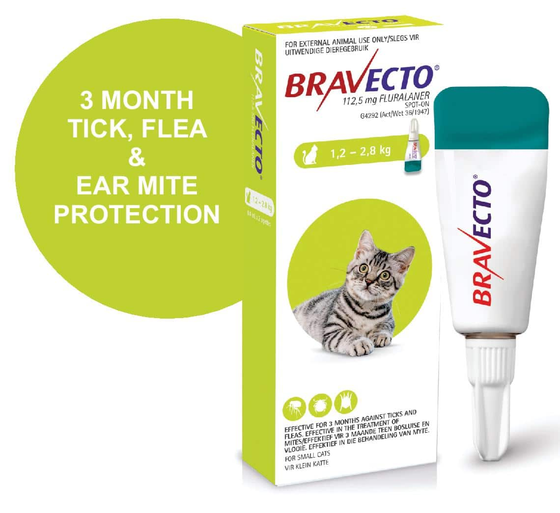 BRAVECTO SPOT-ON CAT Small Lime Green >1.2 - 2.8kg *ON SPECIAL - PRODUCT EXPIRY DATE 07/2021*
