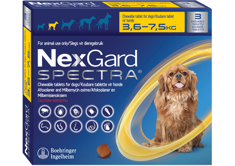 NEXGARD SPECTRA Yellow 3 chews, Small 3.6-7.5kg **ON SPECIAL** #PRODUCT EXPIRY DATE - 01/2022#