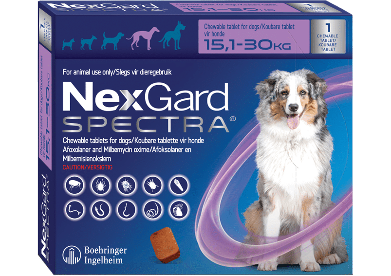 NEXGARD SPECTRA  Purple Single chew, Large 15.1-30kg **ON SPECIAL** #PRODUCT EXPIRY DATE 01/2022#
